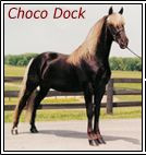 Choco Dock  rocky mountain horse  triple-s-ranch.com.  He is the daddy to my Rooster (Midnight Cowboy).