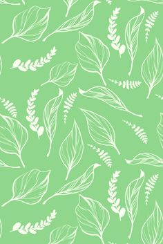 Green Summer Patterns by Emily Julstrom, via Behance