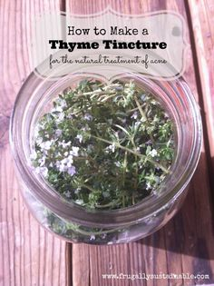 How to make a thyme tincture for the natural treatment of acne by Frugally Sustainable