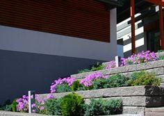 Rudus Muurikko-muuri. http://www.rudus.fi/tuotteet/pihakivituotteet/betonimuurikivet/13751/muurikko