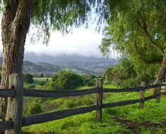 Gorgeous Santa Inez Valley.