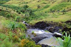Not-too-hard hikes on Guam
