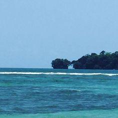 !Buenos días mundo! Good morning world! Bocas del Toro Panamá  #bocasdeltoro #Caribe #maravillasnaturales  #Caribbean  #naturalwonders
