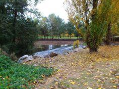 Logroño ciudad - Colecciones - Google+ Parque del Iregua