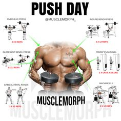 PUSH DAY WORKOUT EXERCISE GYM BODYBUILDING MUSCLEMORPH MUSCLEMORPHSUPPS.COM
