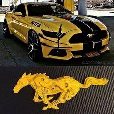 Luxury Cars For Women Ford Mustangs 70 Ideas For 2019 – – Sport Cars Shelby Mustang, Mustang Cars, 2018 Mustang Gt, Mustang Horses, Shelby Gt500, Lamborghini Gallardo, Carros Lamborghini, Sexy Autos, Automobile