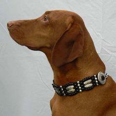 Fancy Dog Collars, Beaded Dog Collar, Hungarian Vizsla, Cute Dogs, Luxury Dog Collars, Funny Dogs