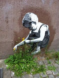 street-art-natura-
