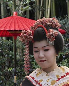 Japanese traditional hair with ornaments - Alexandra's costume