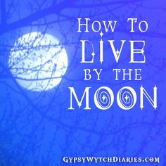 Hello, and welcome back to Magickal Musings, the blog series in which we learn to simplify and implement popular magickal ideas and practices. This week's topic is Moon Magick! The symbol of …