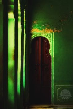 green  #photography  #design
