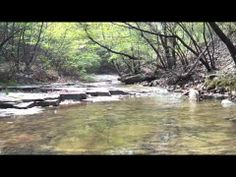 Relaxing Sounds of Water Stream (Nature Sounds, Naturgeräusche, Sound of Wasser)