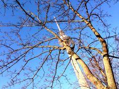 Berlin Blue Sky