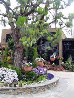 Rogers Gardens Newport Beach Ca My Favorite Nursery And So