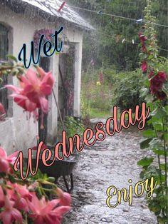 Wednesday, Neon Signs, Movie Posters, Movies, Film Poster, Films, Movie, Film, Movie Theater
