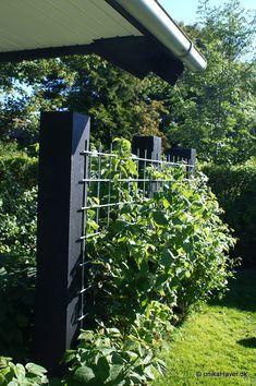Pin by Radek Barvík on Garden Garden Design Plans, Vegetable Garden Design, Fence Design, Side Garden, Garden Trellis, Garden Fencing, Fenced Garden, Modern Landscaping, Outdoor Landscaping