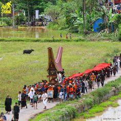"INDONESIA   #ayodolan on Instagram: ""Ma'Palao merupakan bagian dari prosesi upacara rambu solo yakni proses perarakan jasad dari area rumah Tongkonan ke tempat pemakaman atau patane. Loc: Penanian Nanggala, Toraja Utara Foto dolan dari @ewink_ali #ayodolaninfo #ayodolan"""