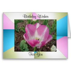==>Discount          	Birthday Wishes Card           	Birthday Wishes Card we are given they also recommend where is the best to buyDeals          	Birthday Wishes Card Here a great deal...Cleck See More >>> http://www.zazzle.com/birthday_wishes_card-137141690012204228?rf=238627982471231924&zbar=1&tc=terrest