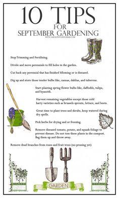 10 Tips for September Gardening