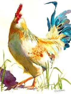 Adams Art Studio - Watercolors - Nancy Floras Adams is an artist in oil painting and watercolors, painting landscapes and animals and birds in their natural environment Art Aquarelle, Art Watercolor, Watercolor Animals, Chicken Painting, Chicken Art, Rooster Art, Art And Illustration, Animal Paintings, Bird Art
