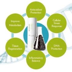 Nu Skin Pharmanex Ageloc Youth Span Dietary Supplement 120 Capsules  SUPPLEMENT FACTS Serving Size 2 Capsules Servings Per Container 60 Amount Per Serving % DV Vitamin D3 (as cholecalciferol) 500 IU 125% Vitamin K2 (as menaquinone-7) 20 mcg 25% 1055 mg * 300 mg * 200 mg * 100 mg * 66.67 mg * 50 mg * 37.5 mg * 25 mg * 18.75 mg * Ultra-pure fish oil concentrate: EPA (Eicosapentaenoic acid) DHA (Docosahexaenoic acid) Citrus Bioflavonoids (including hesperidin and naringin) Purple corn (..