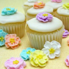 Pastel Double Dainty Icing Flowers from Layer Cake Shop!  Made from royal icing, these flowers will give a little sweet punch to your cupcakes, cakes, cookies, and desserts. Assortment of pink, peach, yellow, turquoise, purple and white.  Pictured on top of a mini cupcake.