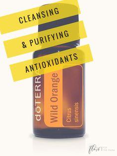 doTERRA Wild Orange Essential Oil 5ml by FloraForTheFauna #doTERRA #sample #tryit #essential #essentialoil #Breathe #WildOrange #orange #Lavender #sleep #sleepy #sleepaid #gifttin #gift #tired #cantsleep #trio #oilkit