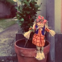 The scarecrow does not scare the sparrows!