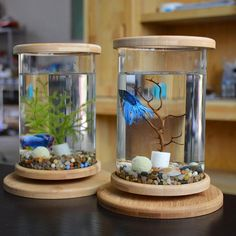 Best home Aquarium Glass Betta Fish Tank Bamboo Base Mini Fish Tank Decorat Latest Fish Tank - Fish Tank for sales