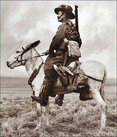 An Australian Light Horseman in Palestine by Frank Hurley