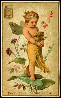 Liebig Tradecard - The Flower Oracle ~ Not at All