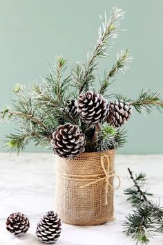 Snowy Tree Winter & Christmas DIY Table Decoration {in 20 Minutes!} - A Piece Of. Snowy Tree Winter & Christmas DIY Table Decoration {in 20 Minutes!} – A Piece Of… Snowy Tree Winter & Christmas DIY Table Decoration {in 20 Minutes!} – A Piece Of Rainbow Winter Wedding Centerpieces, Christmas Table Centerpieces, Xmas Decorations, Wedding Table, Christmas Tables, Decor Wedding, Diy Wedding, Branch Centerpieces, Wedding House