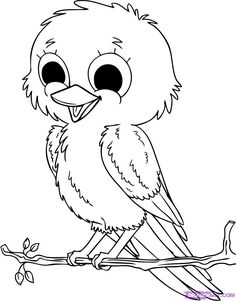 free liltle bird coloring pages   :)