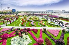 Dubai: Miracle Garden and Global Village Shopping Tour
