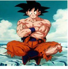 on Goku (孫 悟空?) es un personaje ficticio protagonista del manga y anime Dragon Ball creado por Akira Toriyama. En un inicio Goku aparece como un joven artista marcial con cola de mono y fuerza sobrehumana, mide 1,65 m y pesa 52kg,4 más adelante en la historia se revela que es un extraterrestre de la raza ficticia Saiyajin y que su nombre originalmente era Kakarotto.5 Su nombre proviene de Sun Wukong, un personaje de la historia china Viaje al Oeste,6 y su nombre como Saiyajin