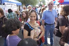 A tiny Chihuahua looks over the crowd of people adopting pets. It was a great day!