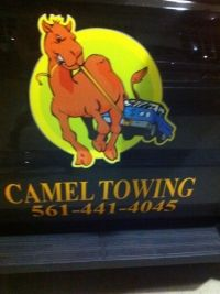 Camel Towing #funny #lol #photo #gif