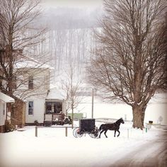 #winter in Amish Country #ohio