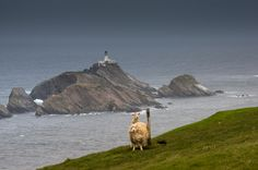 Muckle Flugga Lighthouse · by Andreas Baum most northerly point in Great Britain Wild Deer, England And Scotland, Braveheart, Am Meer, British Isles, Countries Of The World, All Over The World, Great Britain, Places To See
