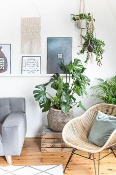 This is my new favorite corner in my remodeling . Urban Jungle - Green Living with Monstera, Succulent and Co! This is my new favorite corner in my remodeling . Urban Jungle - Green Living with Monstera, Succulent and Co! Couch Magazin, Living Room Interior, Jungle Living Room Decor, Living Room Plants, Home Interior, Living Rooms, Home Design, Design Ideas, Modern Design