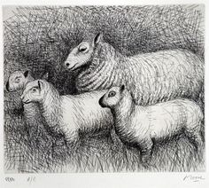 Artwork page for 'Ready for Shearing', Henry Moore OM, CH, 1974 Animal Sketches, Animal Drawings, Art Drawings, Family Illustration, Illustration Art, Henry Moore Reclining Figure, Henry Moore Drawings, Henry Moore Sculptures, Sheep Drawing