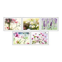 """IKEA KORT art card, summer light Width: 5 """" Height: 7 """" Package quantity: 5 pack Width: 13 cm Height: 18 cm Package quantity: 5 pack"""