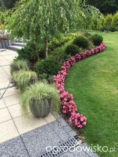 Gorgeous garden and front yard landscaping ideas that help highlight the beauty and architectural features your house. Landscaping Inspiration, Patio Garden, Plants, Garden, Lawn And Garden, Outdoor Gardens, Dream Garden, Garden Borders, Garden Planning