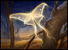 A look at biology in fantasy creatures. Part Nine: Fantasy Insects. Butterfly Art, Butterfly Symbolism, White Butterfly, Butterfly Pictures, Butterfly Wallpaper, Beautiful Butterflies, Fantasy World, Fantasy Forest, Mythical Creatures