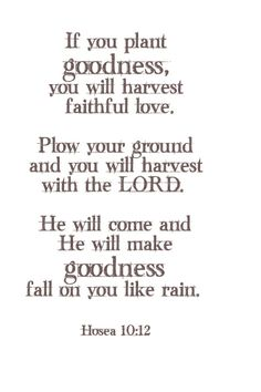 Hosea 10:12 Sow to yourselves in righteousness, reap in mercy; break up your fallow ground: for it is time to seek the Lord, till he come and rain righteousness upon you.