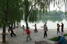 being a part of a tai chi group of old people is on my list of things to do when i get there.