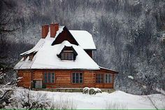 A Cottage house in the Snowy woodlands