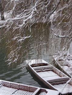 Punts moored in the freezy waters of the winter Cam.