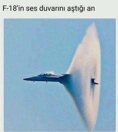 Bilgi Fighter Jets, Aviation, Olinda, Air Ride, Hunting, Jets