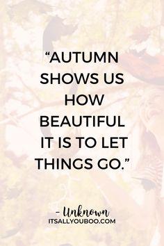 Autumn Teaches Us to Let Go